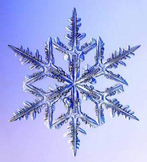 snjezna-pahuljica1